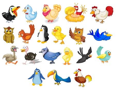 Foto de Collection of mixed cartoon birds on white - Imagen libre de derechos