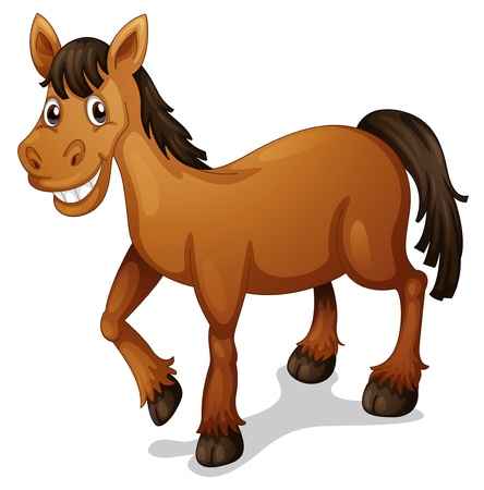 Illustration of a horse cartoon on white