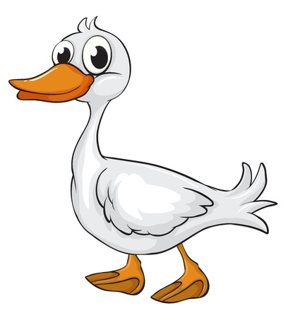 Illustration of a duck on a white background