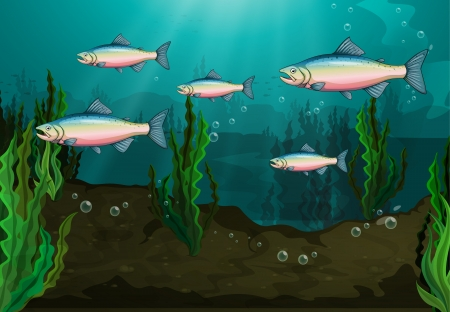 Illustration of a school of fish underwater