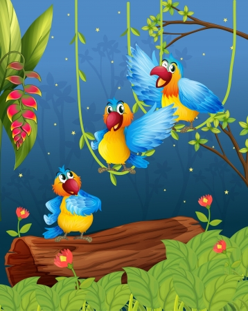 Illustration of three colorful parrots