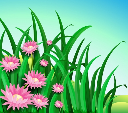 Illustration of a garden with daisy flowers