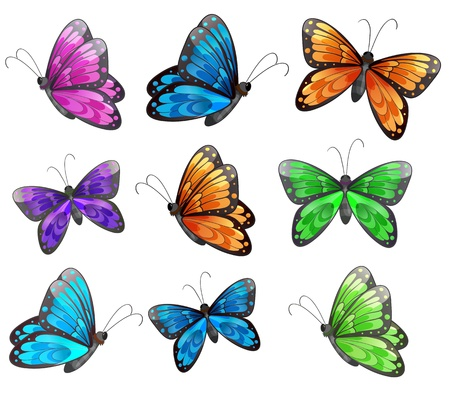 Illustration of the nine colorful butterflies on a white background