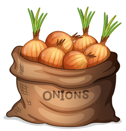 Illustration of a sack of onion on a white backgroundのイラスト素材