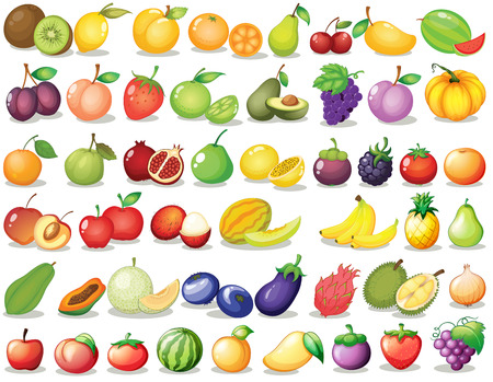 Foto per Illustration of a set of fruit - Immagine Royalty Free