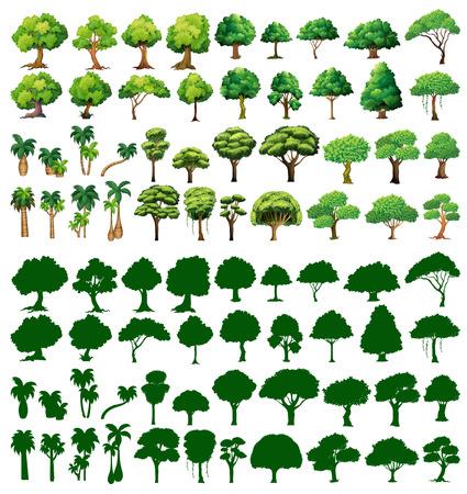 Illustration pour Silhoutte of trees on a white background - image libre de droit
