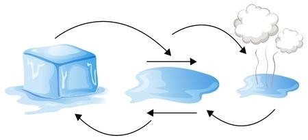 Illustration pour Diagram showing different status of water illustration - image libre de droit