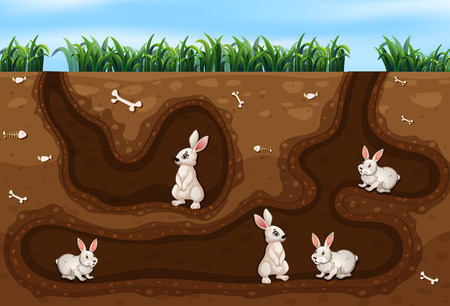 Illustration for Rabbit Family Living in the Hole illustration - Royalty Free Image