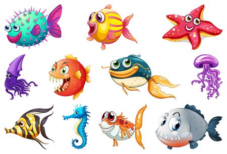 Illustration pour Set of sea creature illustration - image libre de droit