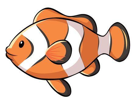 Illustration pour Clownfish on white background illustration - image libre de droit