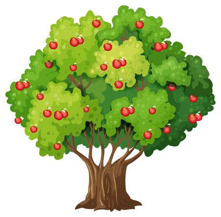 Illustration pour Apple tree isolated on white background illustration - image libre de droit
