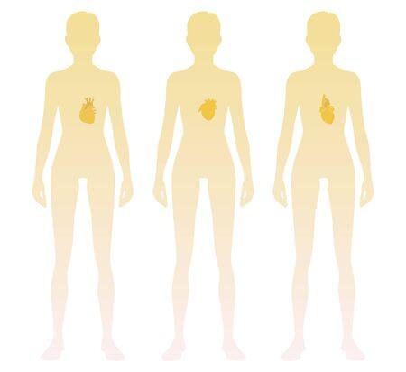 Ilustración de Woman silhouette with heart location on body. Vector illustration - Imagen libre de derechos