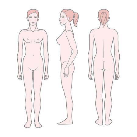 Ilustración de Template Figure of the woman. Front, rear and side views. Vector. Isolated on white background - Imagen libre de derechos