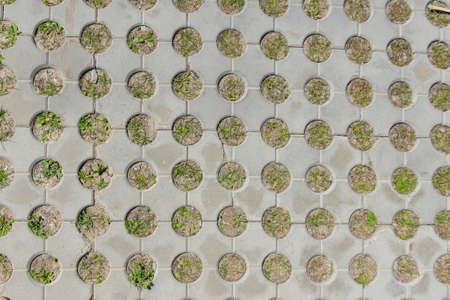 Photo for top view of concrete pavement with growing grass. Background texture - Royalty Free Image
