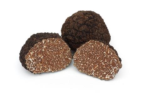 Photo pour Black truffle on a white background - image libre de droit