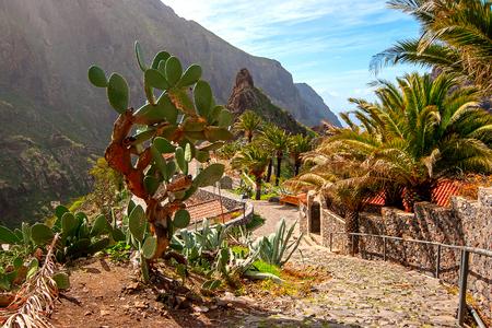 Masca village. Canary Islands. Tenerife. Spain