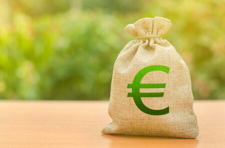 Photo pour Money bag with Euro symbol on a nature background. Business, budget, financial transactions. Available loans and subsidies, government support. Attracting investment to development and modernization. - image libre de droit