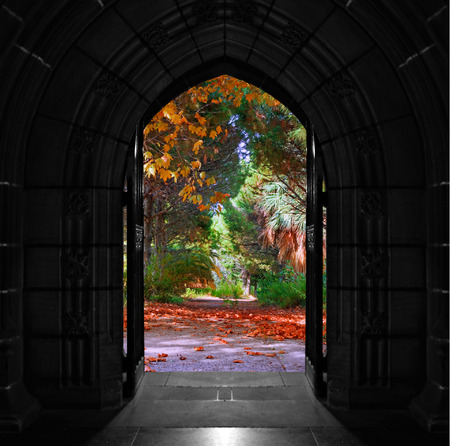 Old arched church doors opening out onto beautiful, colorful forest