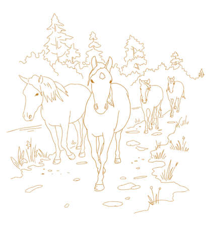 Horses are walking the trail. Hand drawn sketch. One after another. Rural landscape road. Herd of horses in the forest. Vector illustration.
