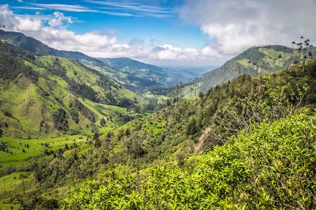 landscape jungle in green mountains, colombia, latin america