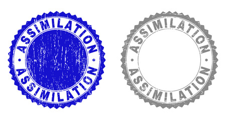 Grunge ASSIMILATION watermarks isolated on a white background. Rosette seals with grunge texture in blue and grey colors. Vector rubber watermark of ASSIMILATION tag inside round rosette.