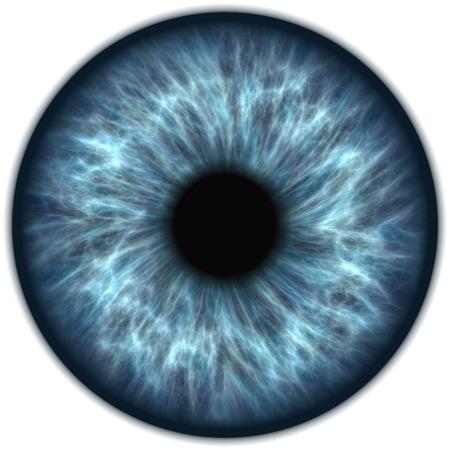 Photo for blue iris - Royalty Free Image