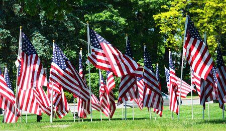 Photo pour USA flags on the meadow - image libre de droit