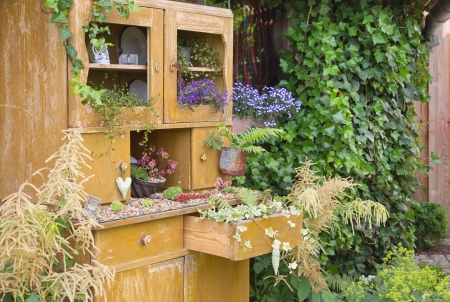 Old cupboard with flowers growing inside it for greeting card.
