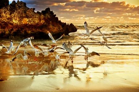 Two Rocks Perth Western Australia