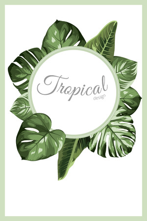Exotic tropical greenery decoration round circle wreath design element. Monstera philodendron jungle palm rainforest tree leaves. Text placeholder. Border frame template decoration banner promo.