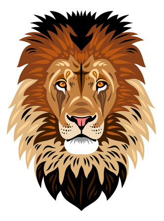 Illustration for The muzzle of a lion - Royalty Free Image