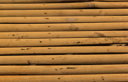 Close-up horizontal bamboo texture background