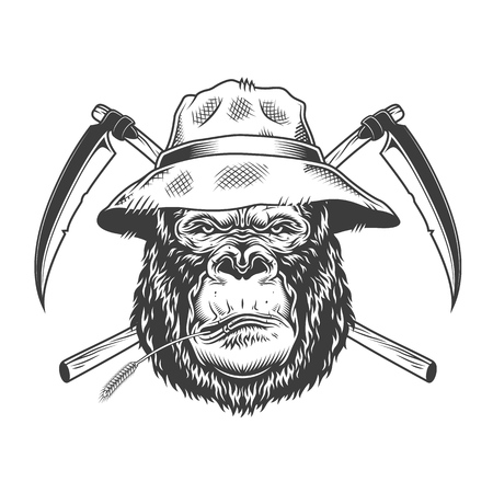 Illustration pour Serious gorilla head in panama hat with straw and crossed scythes in vintage monochrome style isolated vector illustration - image libre de droit