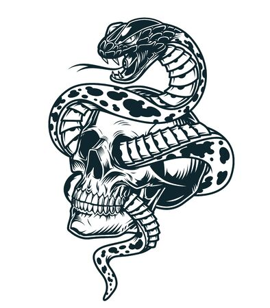 Illustration for Snake entwined with skull template in vintage monochrome style isolated vector illustration - Royalty Free Image