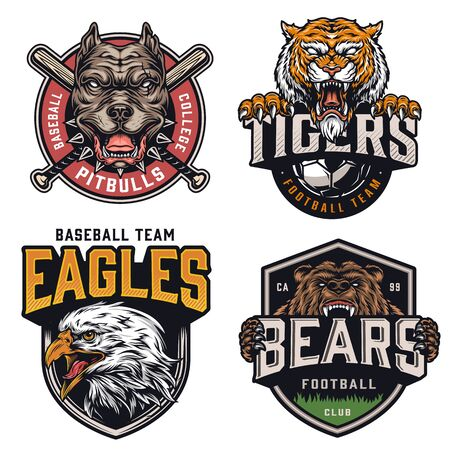 Illustration for Sports teams vintage colorful logotypes with angry pitbull tiger eagle bear mascots crossed baseball clubs and soccer ball isolated vector illustration - Royalty Free Image