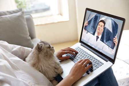 Photo for young asian woman seeing doctor online via video conference using laptop computer with pet cat on her side - Royalty Free Image