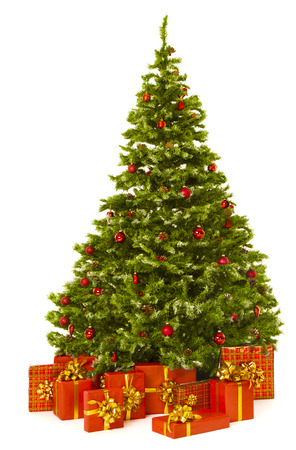 Photo pour Christmas tree and red present gift box, Xmas firtree  isolated white background - image libre de droit