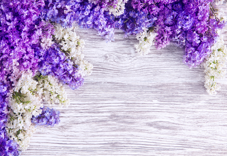 Foto de Lilac Flower Background, Blooms Pink Flowers on Wood Plank - Imagen libre de derechos