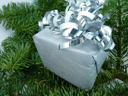A christmas present in a pine tree