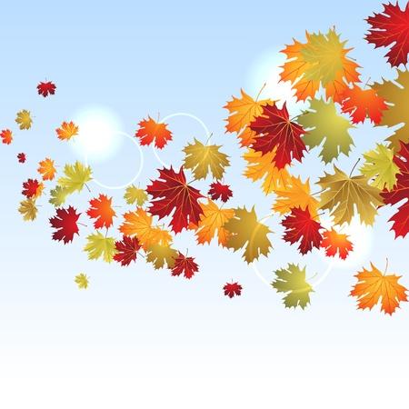 EPS10 Autumn maple leaves background  Vector illustration