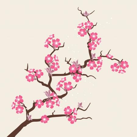 Illustration pour Card with stylized cherry blossom flowers  - image libre de droit
