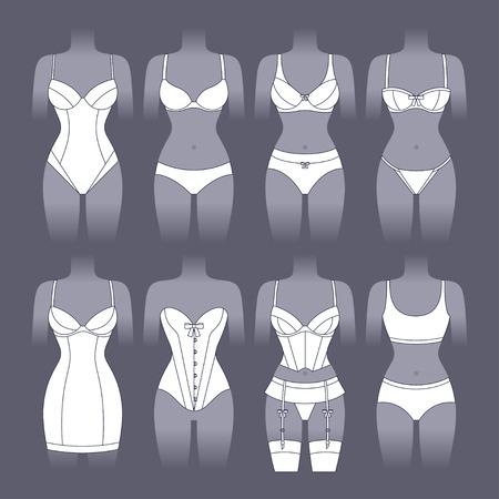 Fashion lingerie set of various female underwear.