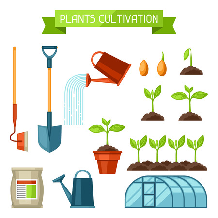 Illustration for Set of agriculture objects. Instruments for cultivation, plants seedling process, stage plant growth, fertilizers and greenhouse. - Royalty Free Image