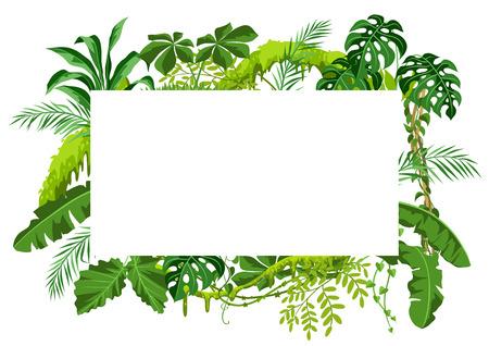 Illustration pour Background with jungle plants. Tropical leaves. Woody natural rainforest. - image libre de droit