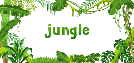 Illustration pour Background with jungle plants. Tropical leaves. Woody natural rainforest. - image libre de droit