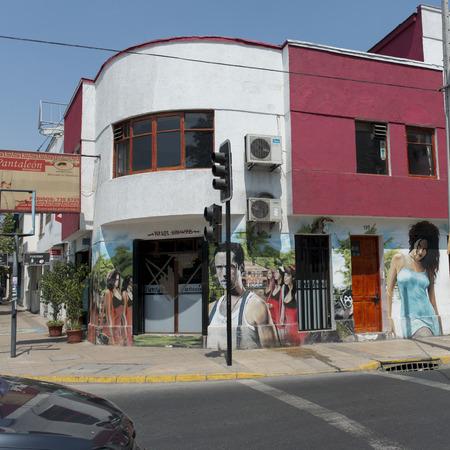 Mural on buildings along street, Calle Antonia Lopez de Bello, Santiago, Santiago Metropolitan Region, Chile