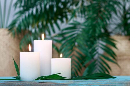 Photo pour White burning candles on palm background - image libre de droit