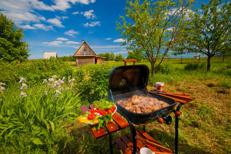 Photo pour BBQ in the garden on clear summer day. - image libre de droit