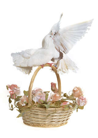 Basket with wedding flowers and doves, studio shot