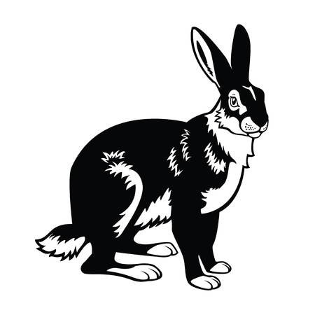 sitting European,forest animal, hare,black and white vector picture isolated on white background